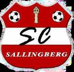 SC NEUMÜLLER SALLINGBERG
